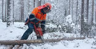 Tonttiraivaukset, puunkaadot, metsätyöt